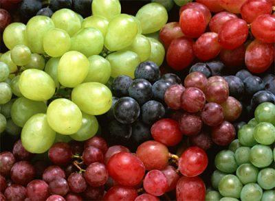 Exportaciones de uvas de mesa chilenas muestran crecimiento en el sudeste de Asia